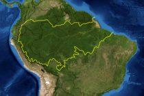 Sve što treba da znate o požarima u Amazonskoj prašumi