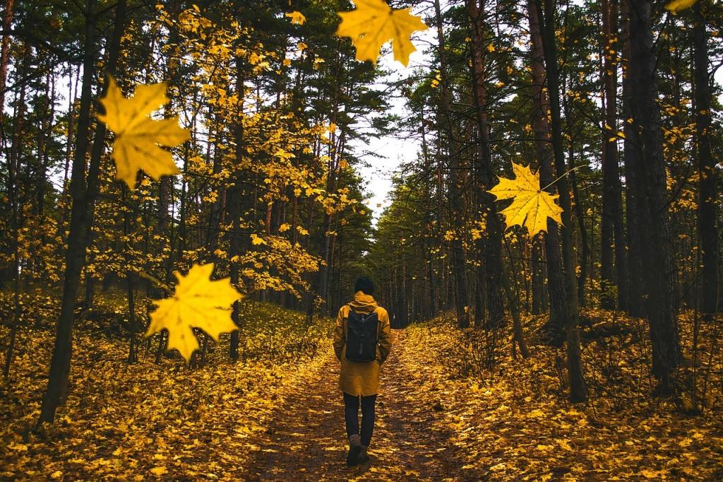 setnja-jesen