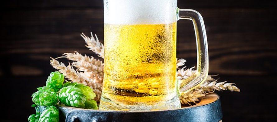 Pivo postaje gorivo?