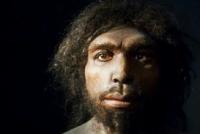 Homo erektusi su pravili brodove i komunicirali govorom?