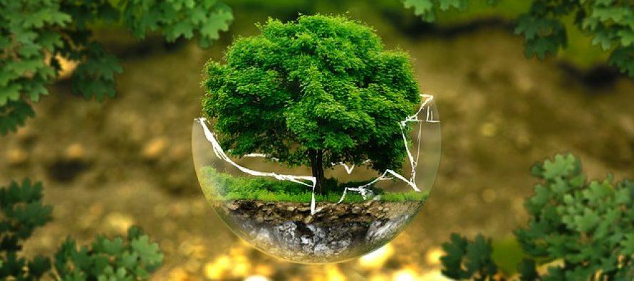 Juče su i zvanično potrošeni resursi planete za ovu godinu