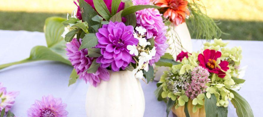 Saveti za negu cveća